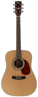 Martin 6 String Acoustic Guitar Tuning